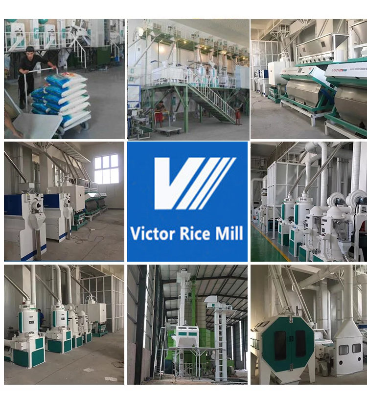 100T/D rice milling project